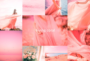 Living Coral color of the Year 2019