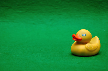 A rubber duck on a green background