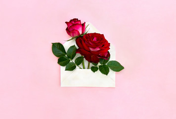 Decoration of Valentine Day. Beautiful flowers red roses in postal envelope on a pink paper...