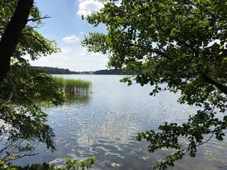 Großensee in Schleswig-Holstein