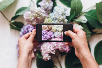Hands holding phone and taking photo of hydrangea flowers on rustic white wood, flat lay. Content for social media concept, blogging photos. Happy mothers day. Hello spring image