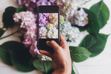 Hand holding phone and taking photo of hydrangea flowers on rustic white wood, flat lay. Content for social media concept, blogging photos. Happy mothers day. Hello spring image