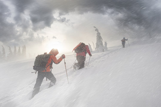 climbers in mountain snowfall