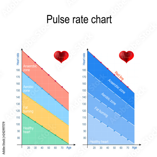 Pulse Rate Chart For Healthy Lifestyle Maximum Heart Rate Stock