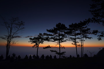 Image of sunrise on orange and yellow horizon with people's silhouette surrounded by pine trees ( Phu kradueng Thailand )