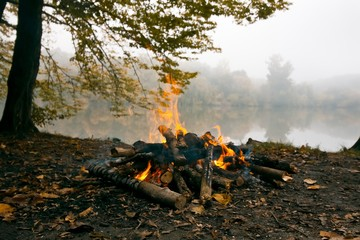 bonfire in forest on the bank of lake, cold autumn evening