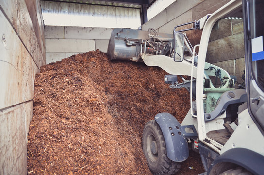 Wheel loader is working with a fertilizer storage as a result of organic wastes recycling process on a biogas plant.
