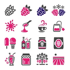 raspberry and blackberry icon set,vector and illustration