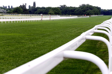 Treated green grass ready for gallop racing on the racing weekend