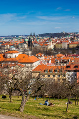 Beautiful sunny early spring day at Petrin park and Prague city on background