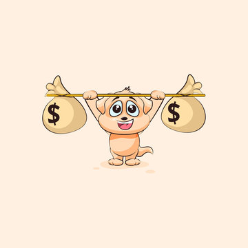 dog cub raises barbell bags of money