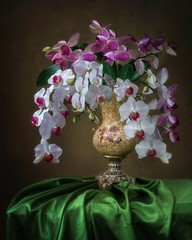 Still life with bouquet of orchid flowers