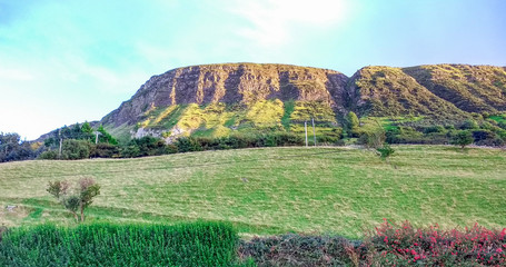 Acrylic Prints Olive mountain in Northern Ireland, landscape
