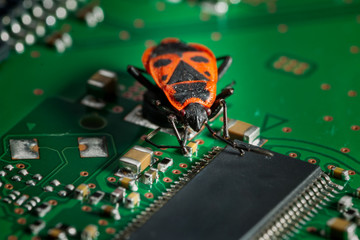 a computer bug causing trouble - on a circuit board
