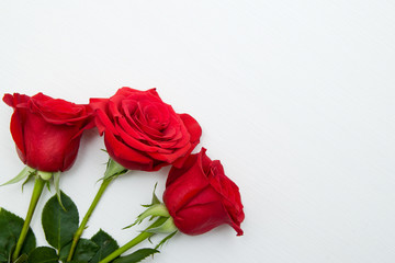 Three Red Roses on white wooden background. copy space - Valentines and 8 March Mother Women's Day concept.