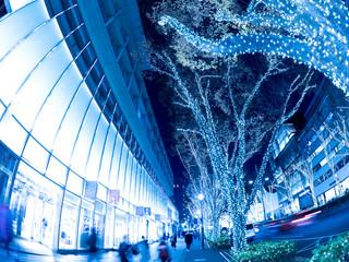 Fototapete - 表参道のイルミネーション