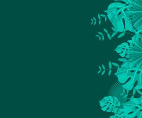 flower frame monstera ufo green