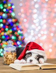Australian shepherd puppy in red santa hat and eyeglasses sleeping near cookies on book with Christmas tree on background