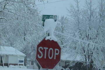 Snowy Stop Sign