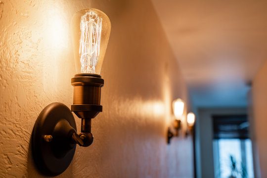 Vintage style light bulbs. glass round bulbs with a spiral on wall.
