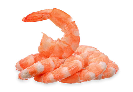Shrimp isolated on white with clipping path