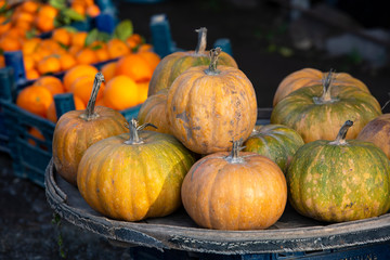 Pumpkins at farm market piled up ready to be sold.