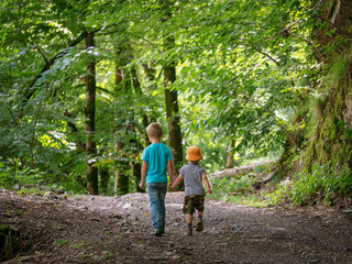 Two boys go along the path in the green forest and hold hands.