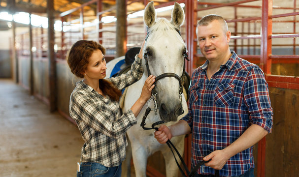 Couple of farmers  standing  with white horse  at stabling indoor