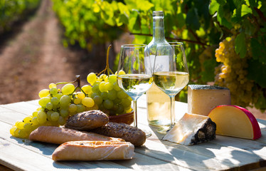 Tasty  cheese, wine, grapes and bread on table  in vineyards