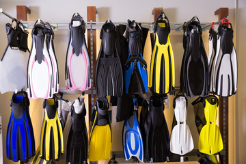 Image of the variety flippers in the diving store