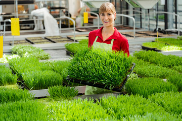 Woman showing wheatgrass in market garden to camera