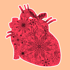 Heart anatomical - doddle art technique, valentine's day