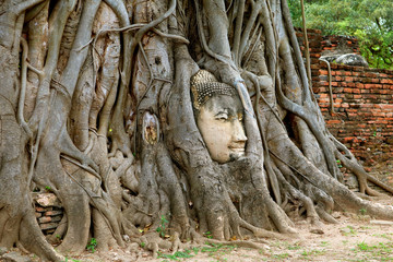 Head of the Buddha Image in the Bodhi Tree Roots, Wat Mahathat Ancient Temple, Ayutthaya Historical Park, Thailand