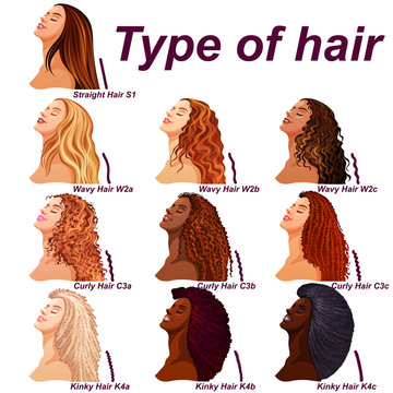 Hair types chart displaying all types and labeled