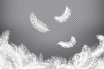 White feather background. Closeup bird or angel feathers. Falling weightless plumes. Dream vector illustration Wall mural