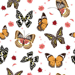 Garden butterflies flying in the garden ,lady bug,insect seamless pattern vector scattered repeat for fashion ,fabric ,wallpaper