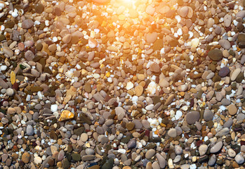 pebble water Nature sunrise spring concept