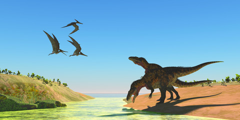 Acrocanthosaurus Dinosaurs - Pteranodon reptiles fly over two Acrocanthosaurus dinosaurs as they drink from a stream in the Cretaceous Period.