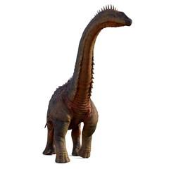 Alamosaurus Dinosaur on White - Alamosaurus was a titanosaur sauropod herbivorous dinosaur that lived in North America during the Cretaceous Period.