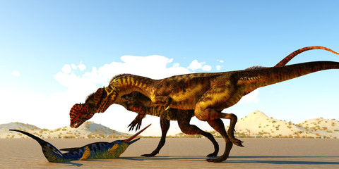 Dilophosaurus Dinosaurs find Eurohinosaurus - A Eurohinosaurus marine reptile lays helpless on the tidal flats as the sea goes out as two Dilophosaurus theropod dinosaurs look at him as their next mea