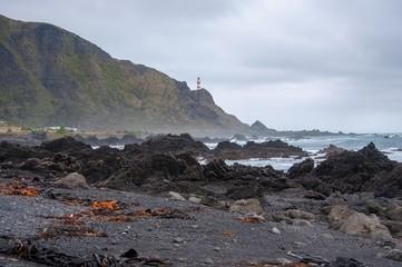Cloudy day at Cape Palliser