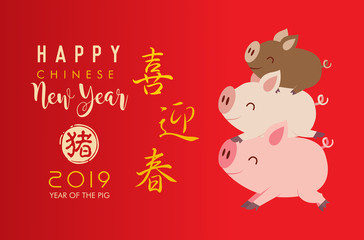Chinese new year 2019 with cute little pigs. Translation: happy new year.