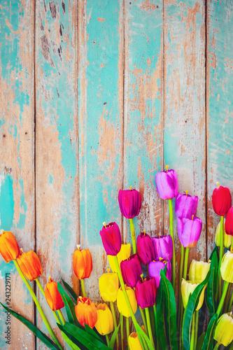 Wall mural Tulip blossom flowers on vintage wooden background, border  frame design. vintage color tone - concept flower of spring or summer background