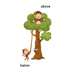 Opposite below and above vector illustration