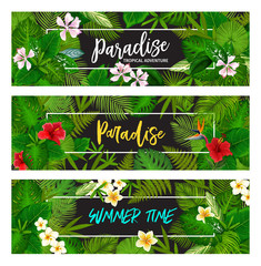 Tropical exotic palm leaf banners
