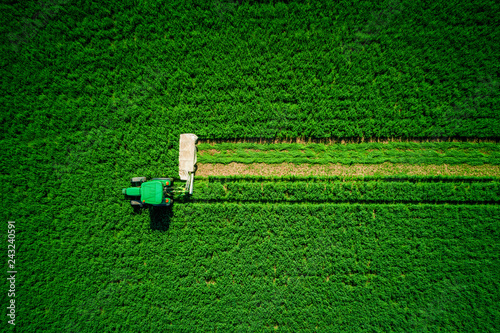 Wall mural Tractor mowing agricultural green field, aerial drone view