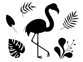 Silhouettes of african birds of flamingos and tropical leaves. Flora and fauna. Vector isolated objects on white background.