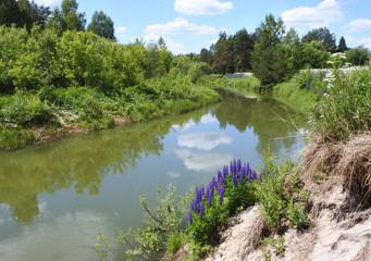 Landscape. A small river.