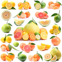 Citrus fruits on a white background