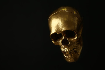 Golden human skull on dark background